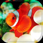 Nemo Funny LiveWallpaper