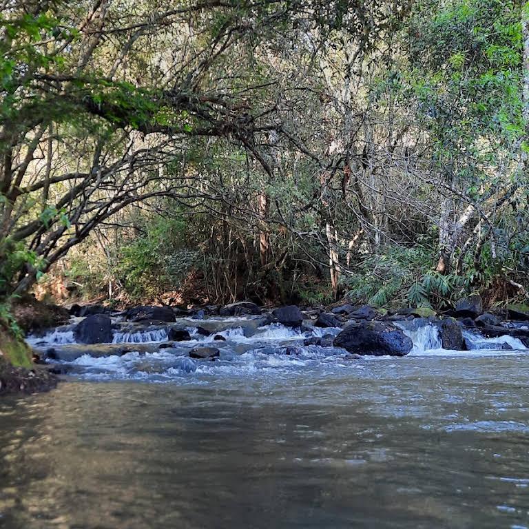 Cachoeira do gusto caipira - Atração Turística em Ribeirada