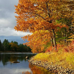 Autumn hike by Sandy Davis DePina - Landscapes Waterscapes ( autumn leaves, foliage, fall, autumn colors, river )