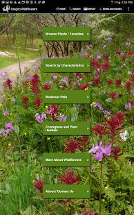 Oregon Wildflowers - screenshot thumbnail