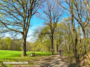 Photo: Clairière dans la forêt de Meudon - e-guide balade à vélo de Versailles à Meudon par veloiledefrance.com