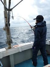 Photo: 沖までウキが流れたら、真鯛は喰う!・・・しかし、シイラの数がスゴイ!