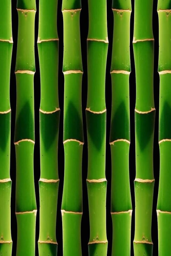Green live wallpaper android apps on google play green live wallpaper screenshot voltagebd Choice Image