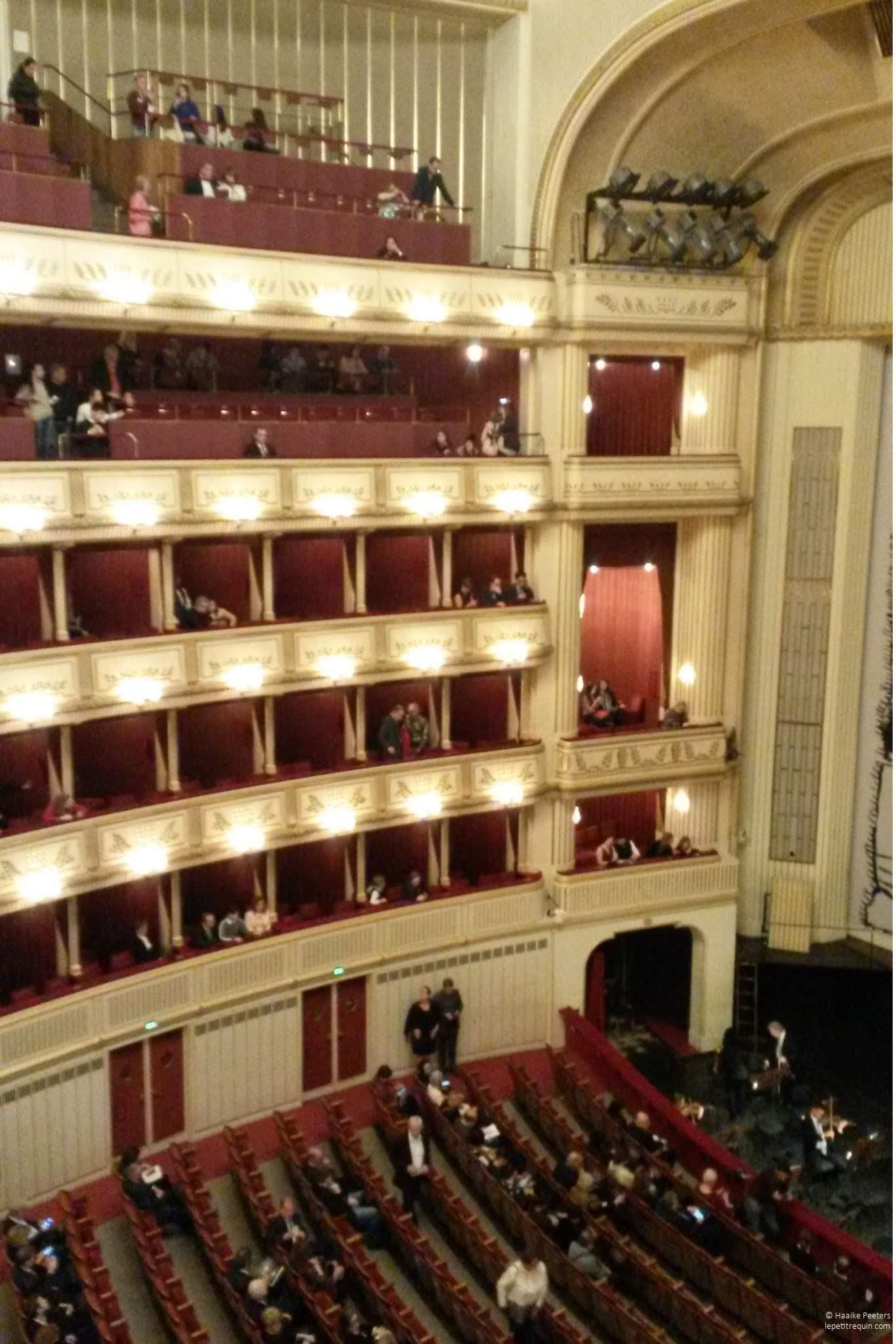 Wiener Staatsoper (Le petit requin)