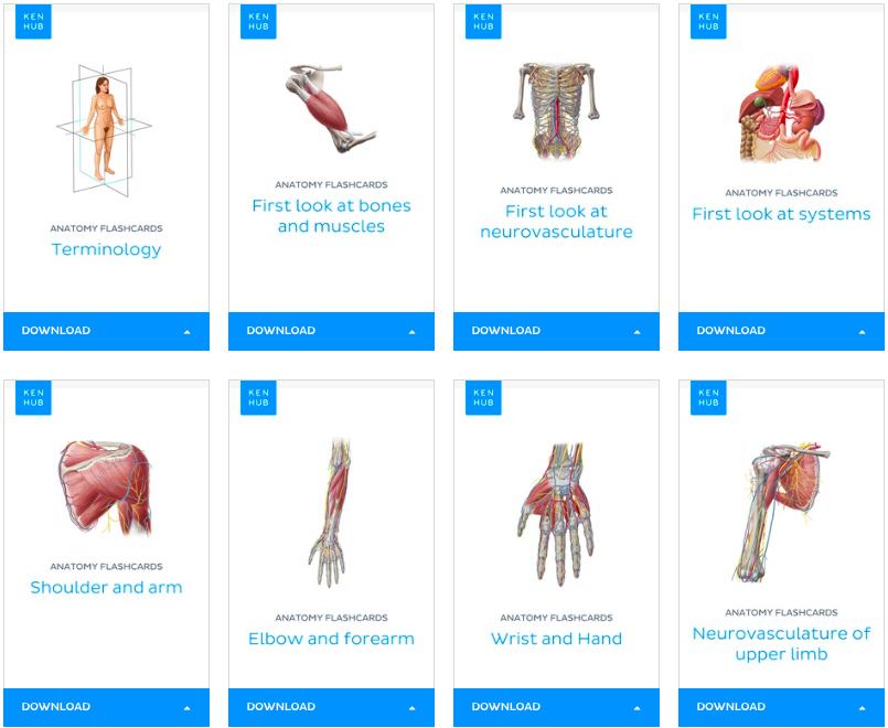 GU Surgical Society - Learn Anatomy Kenhub