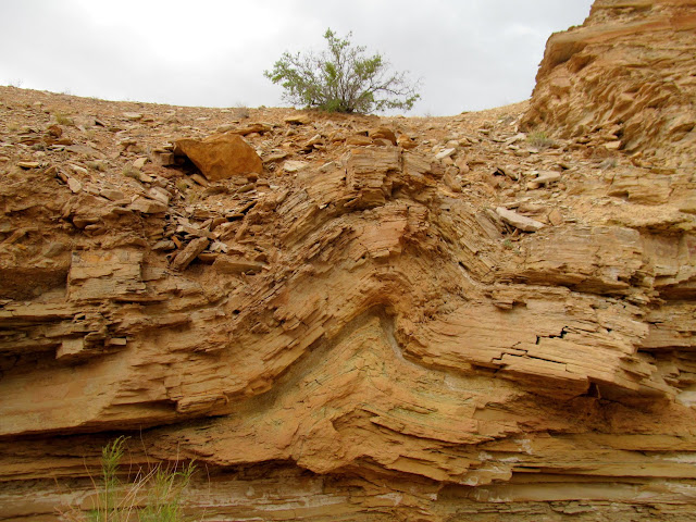 Small fold in the canyon walls