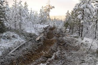 Photo: Färska körskador på sluttningen av Melakträskliden. Hur djupa kommer spåren att bli när även skotaren med flera timmerlass på totalt 40 ton och sedan även med hyggesrester har kört här?