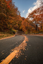 Photo: Colorful Curves of Autumn  Nothing like a nice drive along a mountain road during autumn! This photo comes from such a drive in Gunma Prefecture. Also, I have a new video tutorial up today giving a rundown on how I processed this image, so be sure to check it out on today's blog post!  Blog post: http://lestaylorphoto.com/colorful-autumn-road-in-japan/  #japan #cooljapan #travel #autumn #群馬県 #秋
