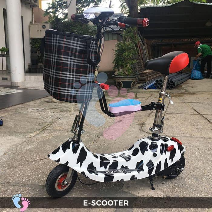 Xe điện E-Scooter mini gấp gọn 5