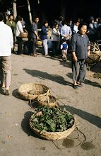 Photo: 11114 鎮江/自由市場/野菜