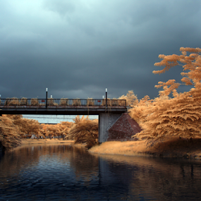 Darkness Falls by Yohanes Arief Dewanto - City,  Street & Park  City Parks ( citypark, ecopark, park, infrared, falsecolour, , relax, tranquil, relaxing, tranquility )