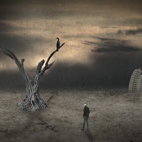 decline by Babis Mavrommatis - Digital Art People ( art, fantasy, surrealism, artistic object, creation )