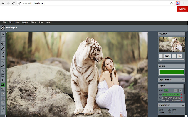 Image editor PaintMagick for photos