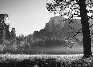 Photo: Sunrise - meadow #2769-600-b&w (by request)