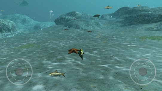 Real Fish Simulator 2