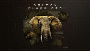 Animal Black Ops thumbnail