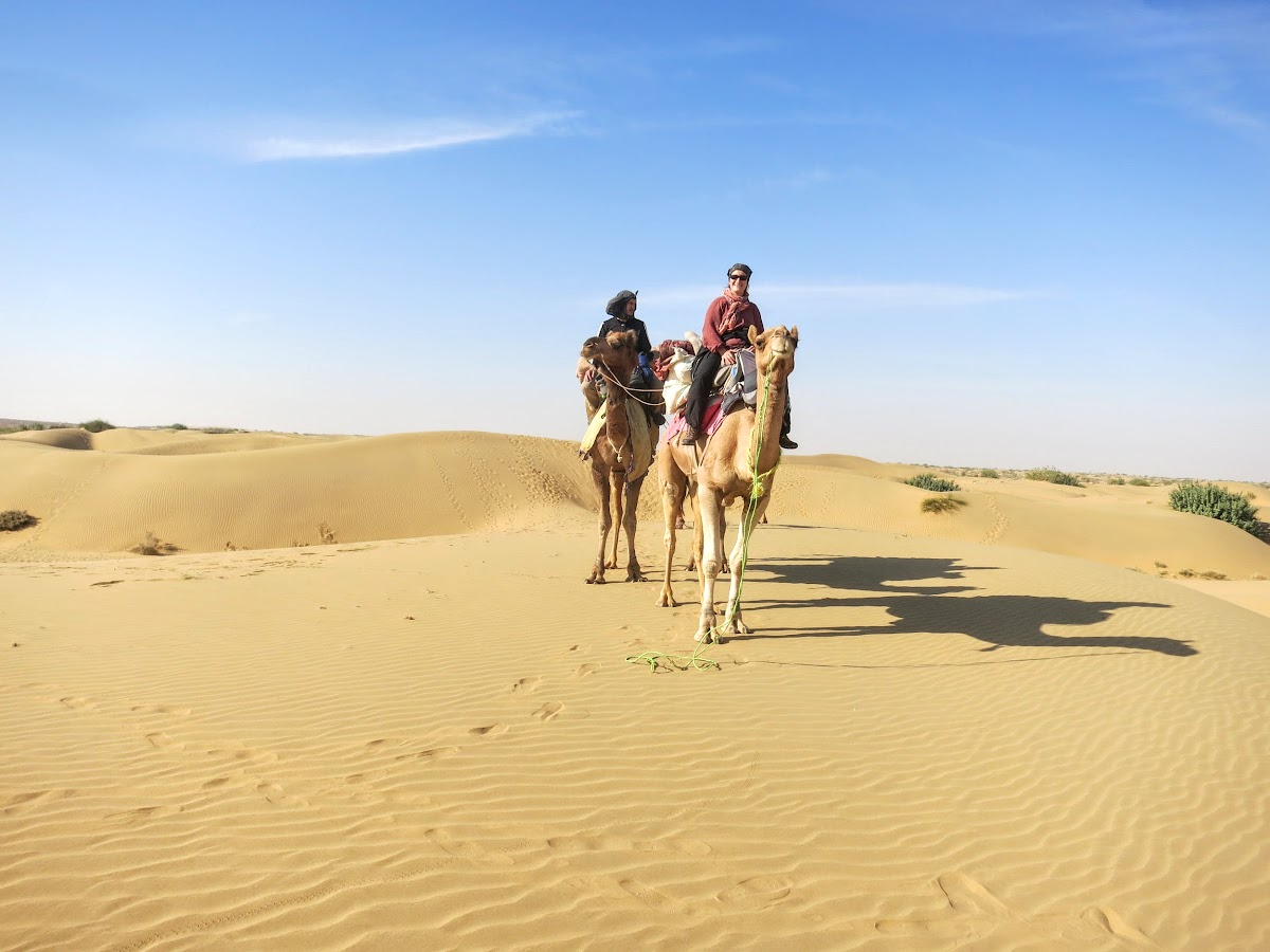 India. Rajasthan Thar Desert Camel Trek. Standing with our Camels on the Pukhar Sand Dunes