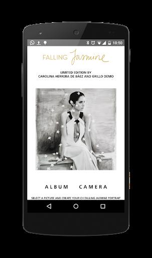 CH Falling Jasmine