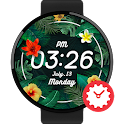 Tropical watchface by Kallos icon