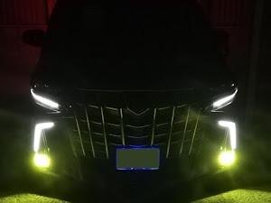 アルファード AGH30W 2018-5月1日納車式のカスタム事例画像 アル&エルさんの2020年07月24日10:49の投稿