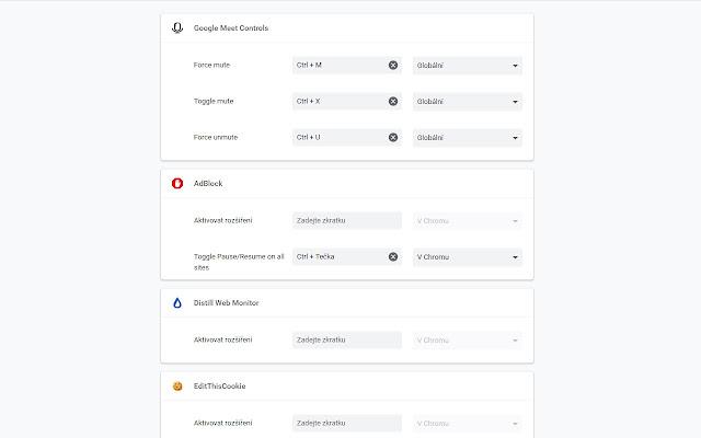 Google Meet Controls