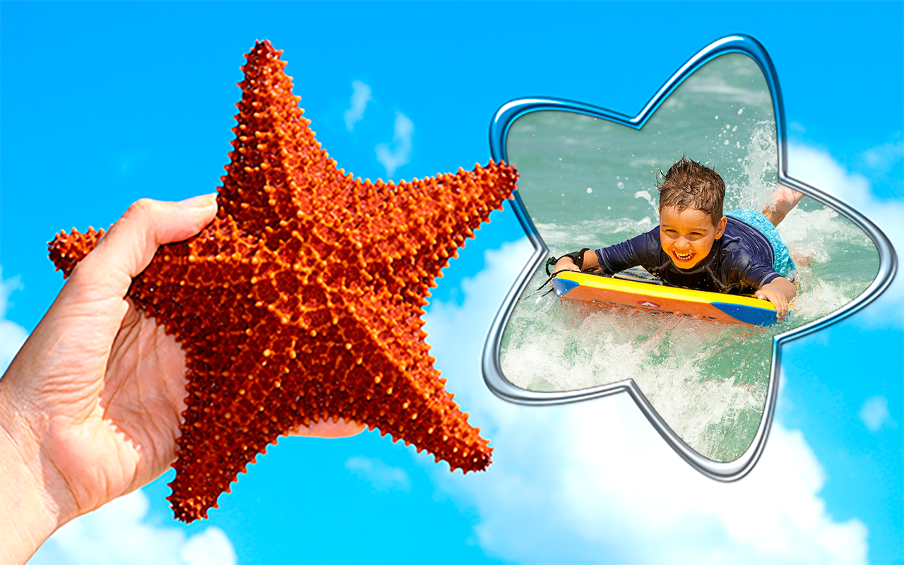 Starfish Photo Frames Apl Android Di Google Play