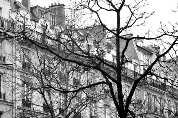 A Parigi l'inverno non vuole finire... di marlau
