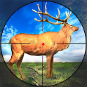 Hunting Games 2021 : Wild Deer Hunting icon