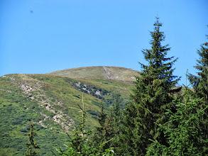 Photo: 15.Wierzchołek dość dobrze widać ze szlaku, ale podejście na niego jest całkiem spore.