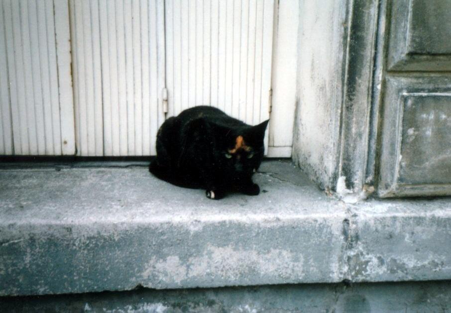 Photo: 86年7月フランスのルーアン
