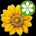 Meine Bachblüten icon