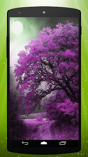 Purple Forest Live Wallpaper