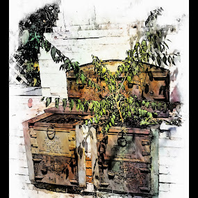 The Outdoor Fireplace by Debbie Duggar - Buildings & Architecture Decaying & Abandoned ( barbeque, outdoor grill, fireplace, abandoned )