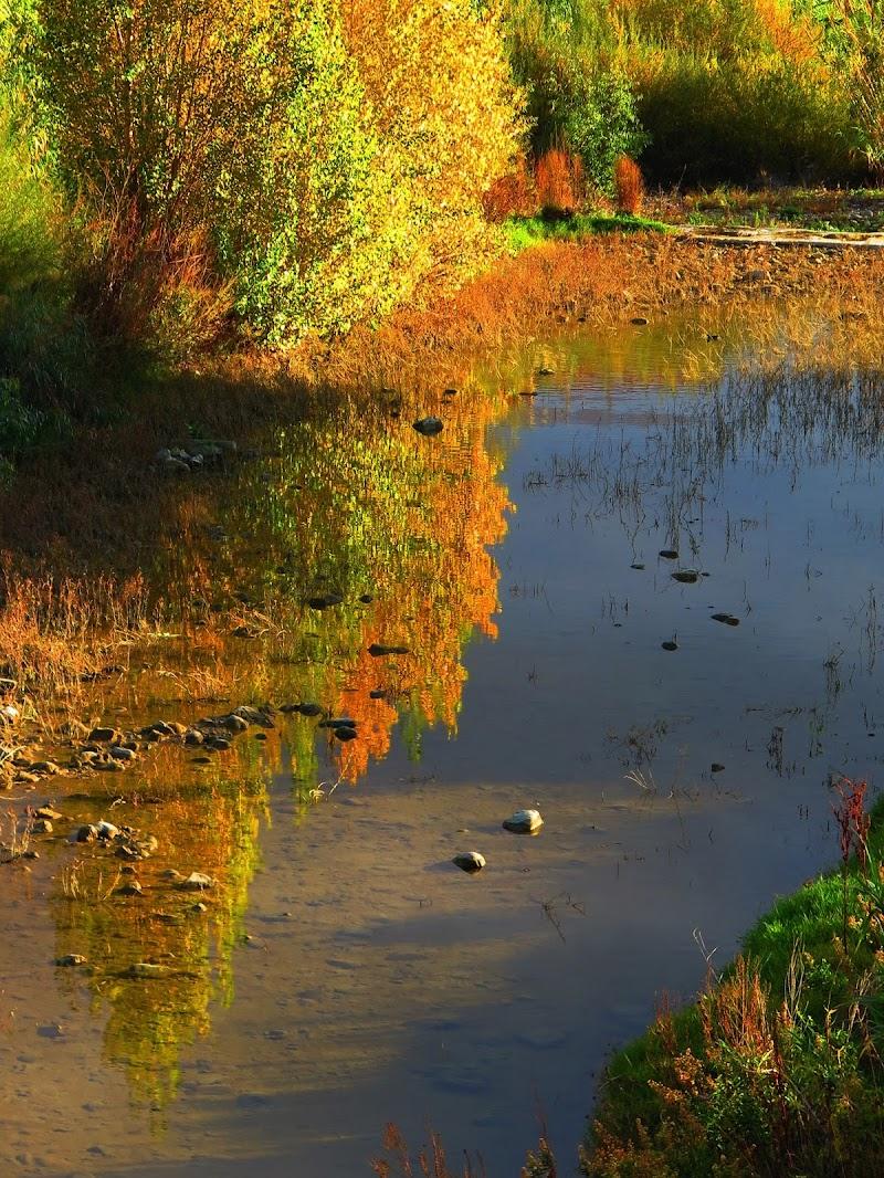 riflessi d'autunno di malte