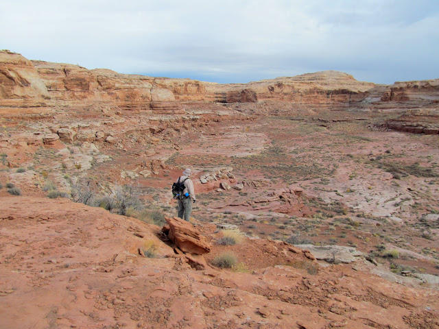 Alan overlooking the canyon