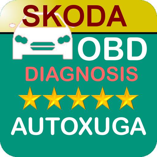 SKODA diagnosis coches con lectura,borrado averías