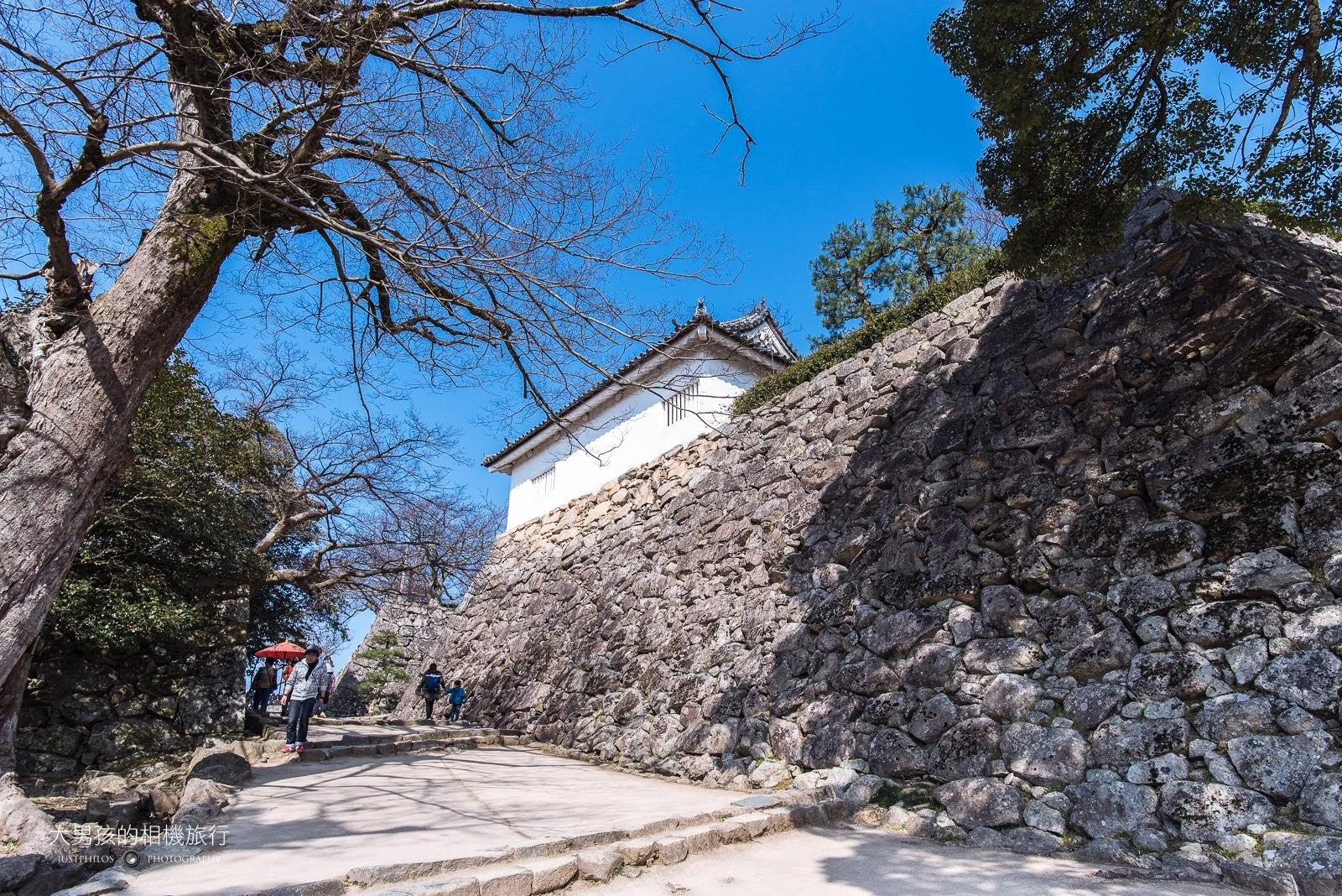 過了天秤櫓再走一小段上坡就可以到彥根城天守閣了。