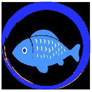 Aquarium fish: Description, Photo, Offline