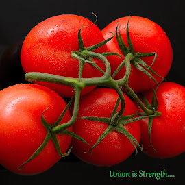 Union is strength by Sanjeev Kumar - Typography Quotes & Sentences (  )