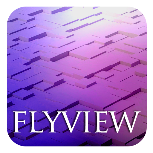 3D Fly View