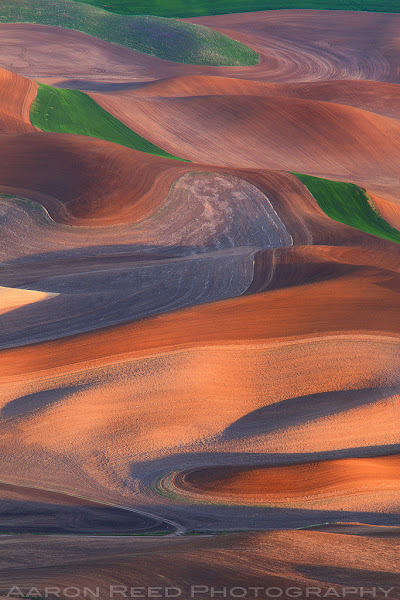 Photo: Life In The Palouse - Steptoe Butte