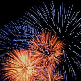 Waterfront Fireworks by Hugh Hazelrigg - Public Holidays July 4th ( holiday, time exposure, fireworks, july 4, #GARYFONGDRAMATICLIGHT, #WTFBOBDAVIS )