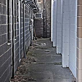 Path of HDR by Tj Barney - City,  Street & Park  Street Scenes ( cool, multihdr, hdr, fun, alley )