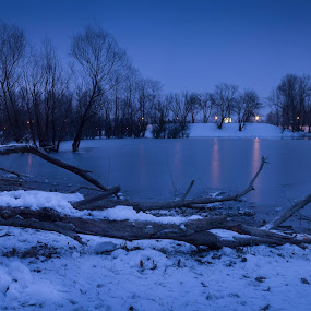Lake at Bundek by Nena Volf - Uncategorized All Uncategorized ( winter, blue hour, croatia, bundek, lake, zagreb )