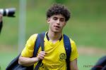 Genkse youngster en broer van Anderlechtspeler duikt op in Nederland