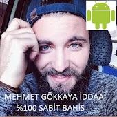 Mehmet Gokkaya