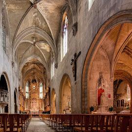 Inside Saint Pierre Church, Avignon. by Jiri Cetkovsky - Buildings & Architecture Public & Historical ( interior, church, anignon, historic, interior historic )