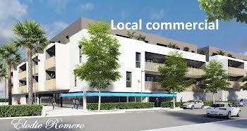 locaux professionels à Lunel-Viel (34)