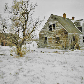 Oh Lonesome Me by James Oviatt - Buildings & Architecture Decaying & Abandoned
