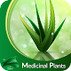 Download Medicinal Plants & Herbs : Their Uses For PC Windows and Mac